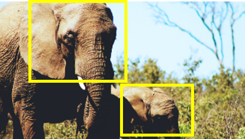 Save the Elephants | aeriel imagery to locate elephants with Deep Learning | AI for Social Good